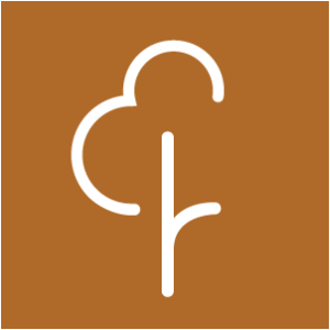 https://anioly24.pl/wp-content/uploads/2019/11/Parkrun-katowice.png